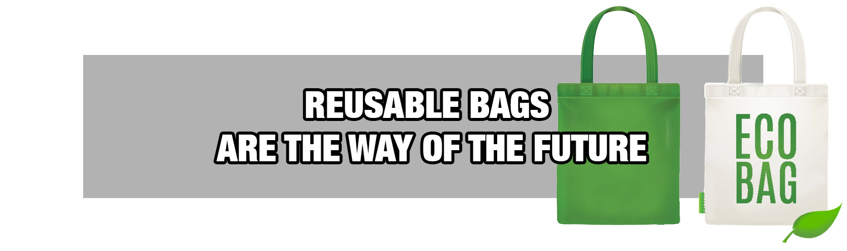 Reusable Bags are the Way of the Future