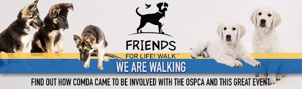 Friends for Life! Walk – Why We Are Walking